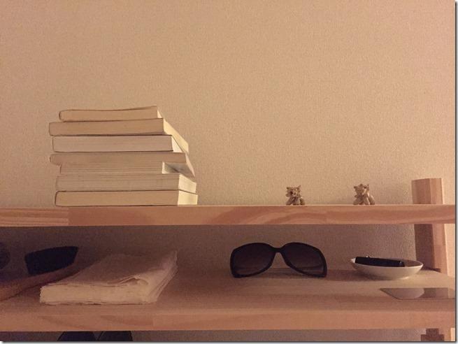shelf (5)
