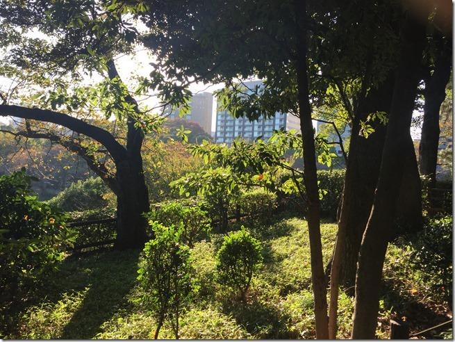 imperial garden 04