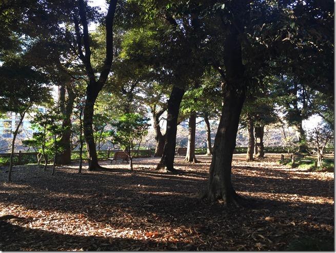 imperial garden 09