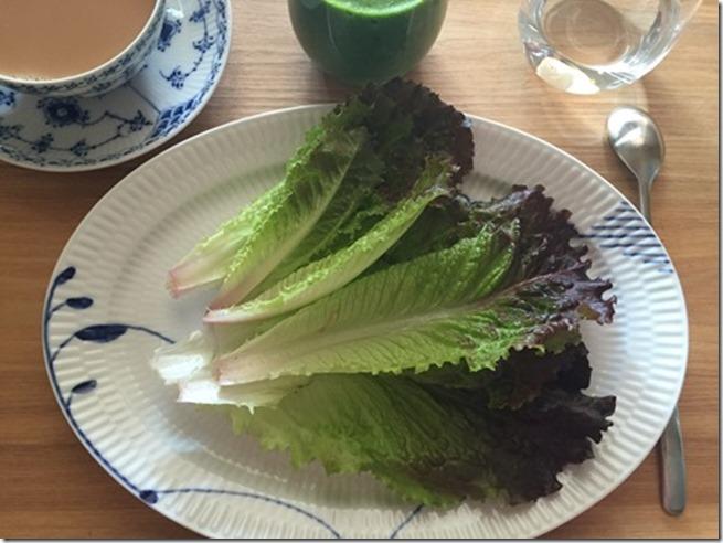 farmers market lettuce (2)