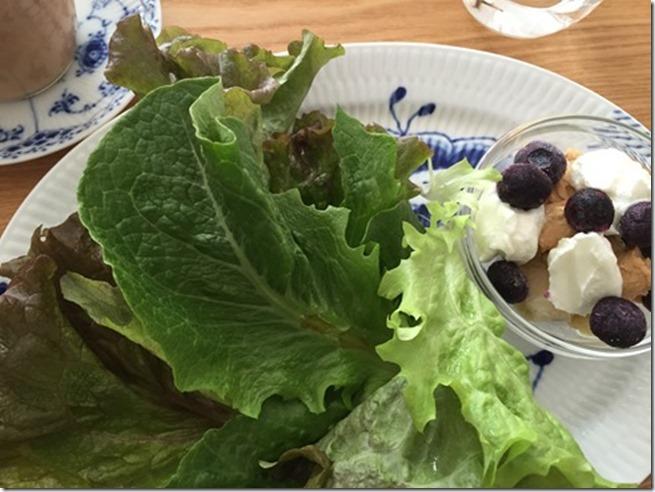 breakfast lettuce