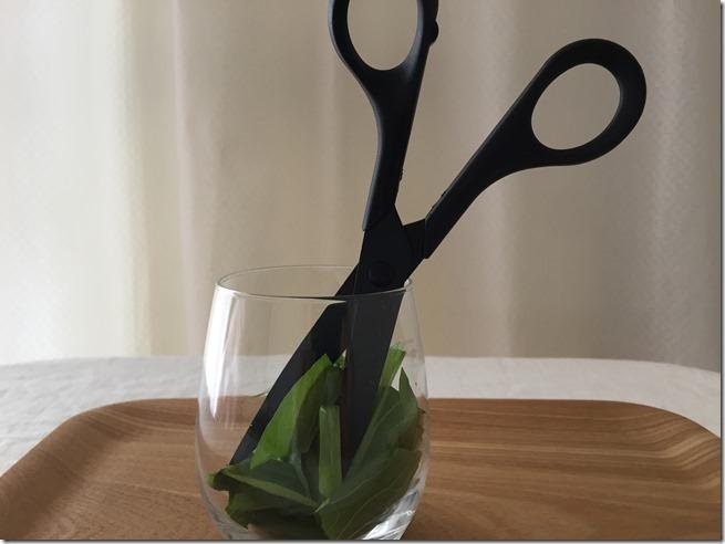 notkitchen scissors