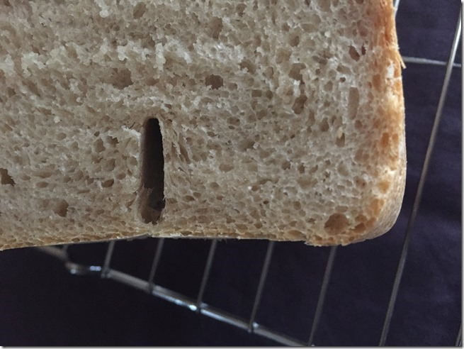 olive oil bread (11)