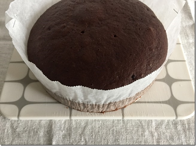 steamed chocolate cake (6)