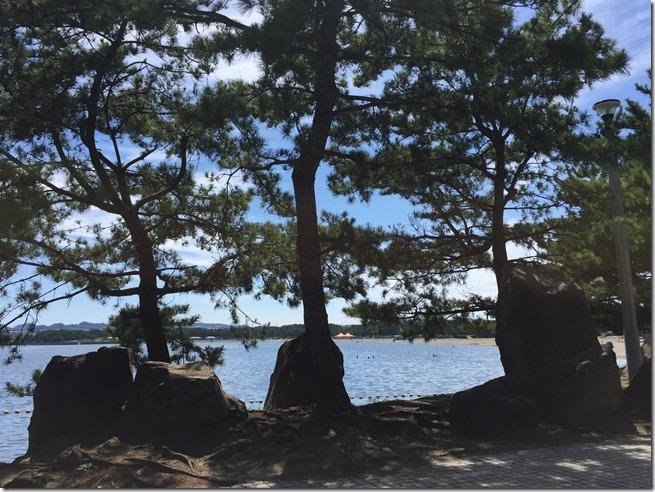 umino kouen beach (17)