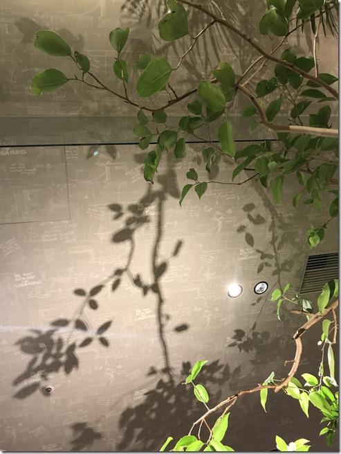 tsutaya kaden (1)