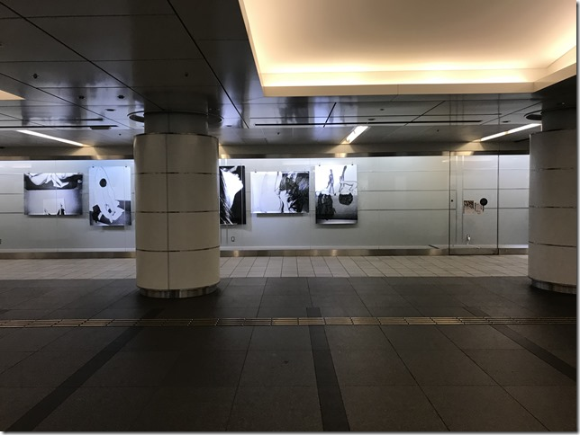 gyoko gallery (8)