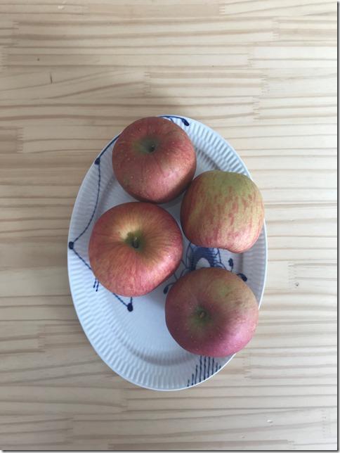 apple sauce (10)