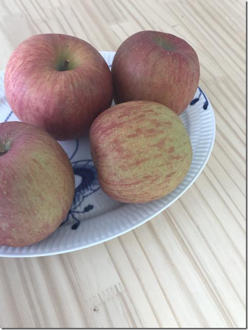 apple sauce (1)