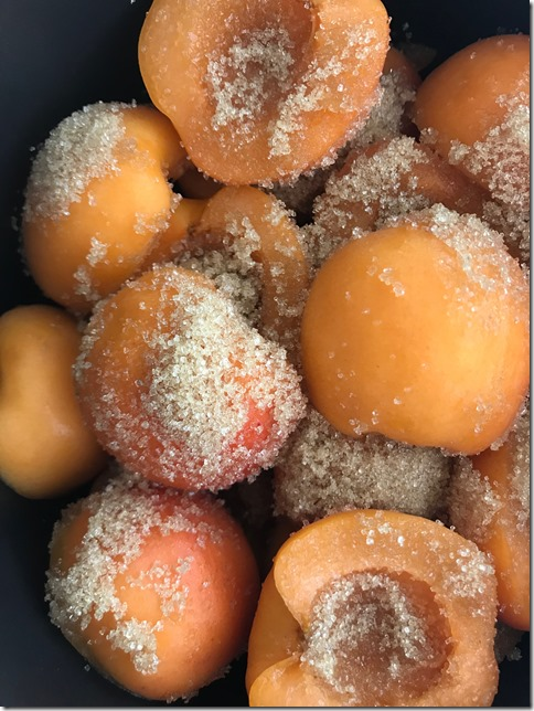 apricot jam (10)