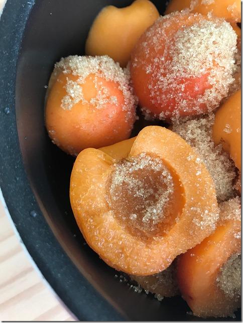 apricot jam (13)