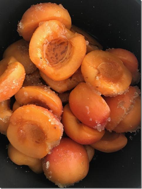 apricot jam (14)