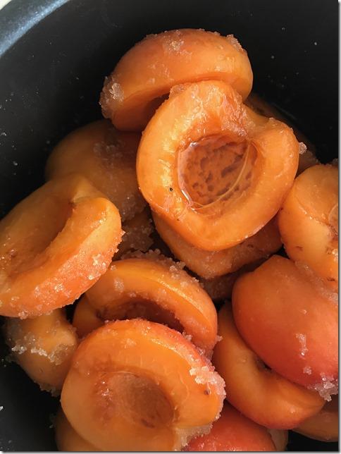 apricot jam (15)