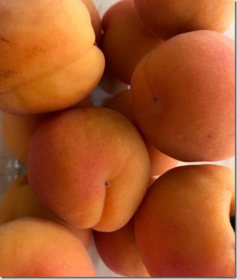apricot jam (8)