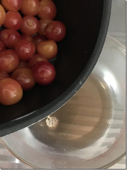 japanese cherries (18)