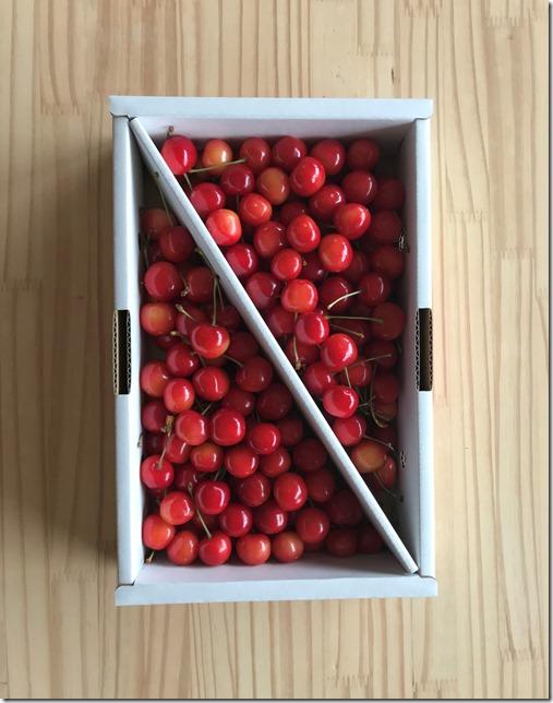 japanese cherries (1)