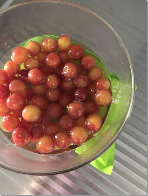 japanese cherries (21)