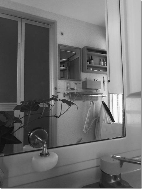 magnetic soap holder (2)