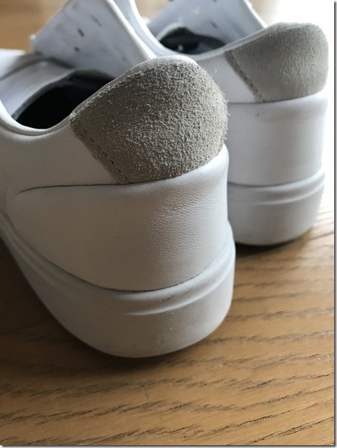 sneaker cleaning (1)