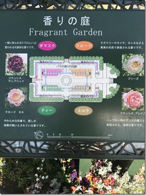 fragrant garden (3)