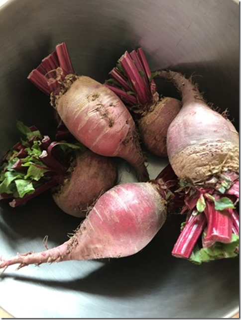 hotcook does beet root (1)