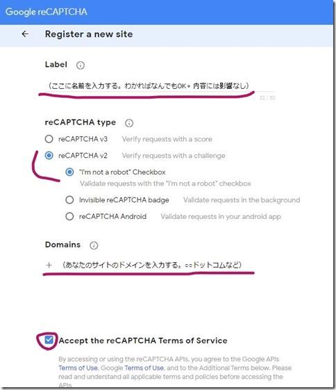 contact form et recaptcha (5)_LI