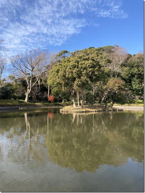kamakura hachimangu (2)