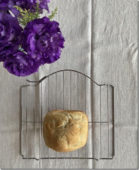 machine bread for mochi lovers (1)