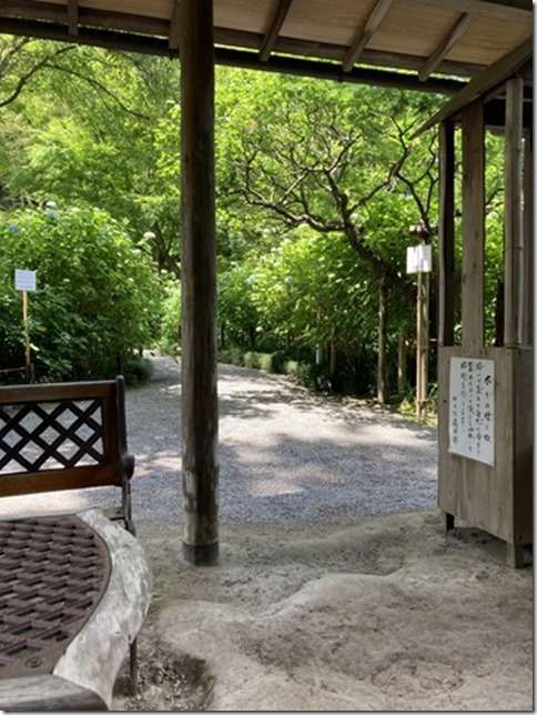 meigetsuin 4th wk of may (10)
