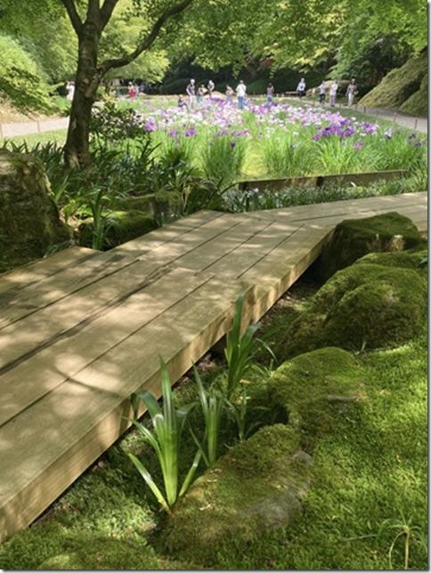 meigetsuin rear garden (4)