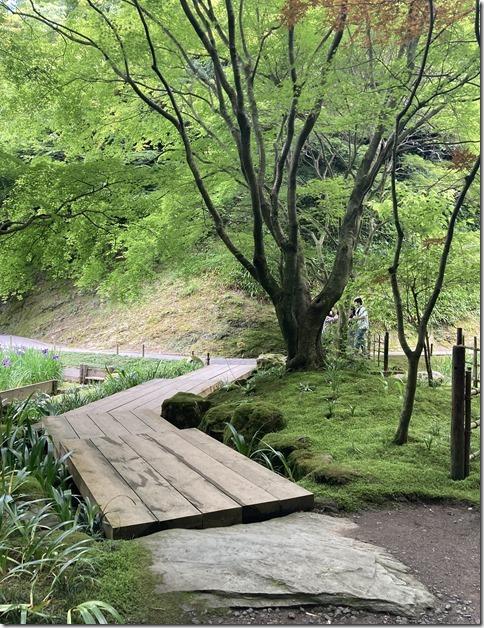 meigetsuin rear garden (8)