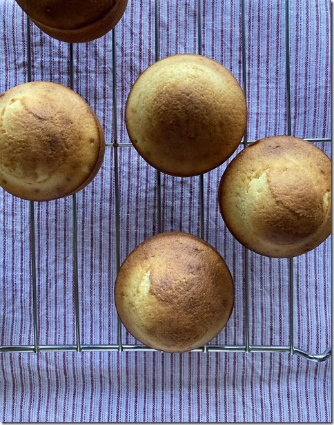 low fat madeleines (18)