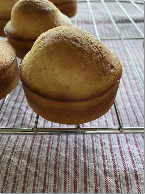 low fat madeleines (20)