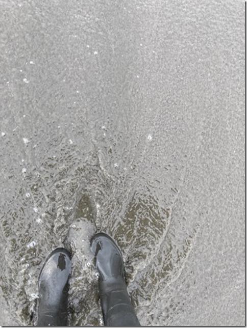 rainboots (12)
