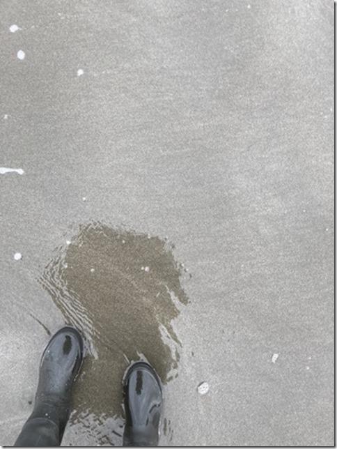 rainboots (14)