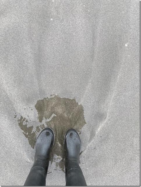 rainboots (9)
